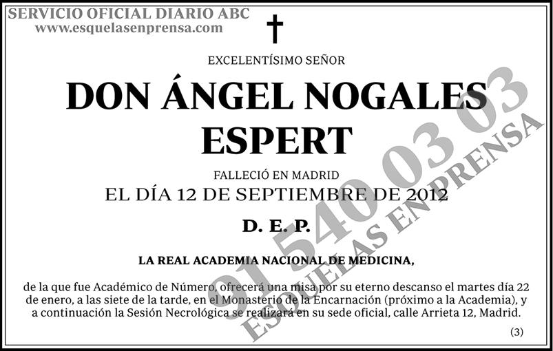 Ángel Nogales Espert
